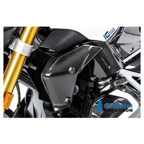 Carbonteile für BMW R1250 R-RS 19- Ilmberger